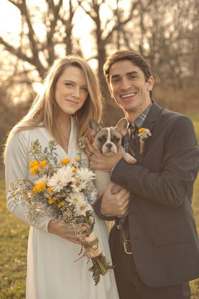 Perros Y novias