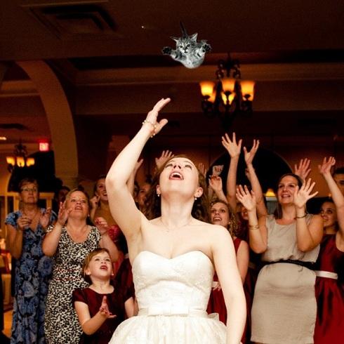 gatos voladores en vez de tirar el ramo de novia3