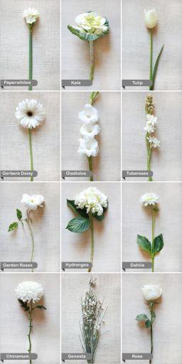 Ramos Preciosos Blancos para Novias