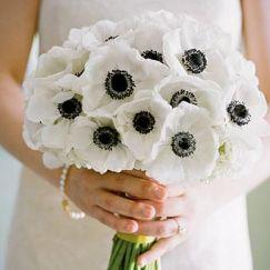 Ramos de novia con flor blanca rústicos, sencillos y elegantes