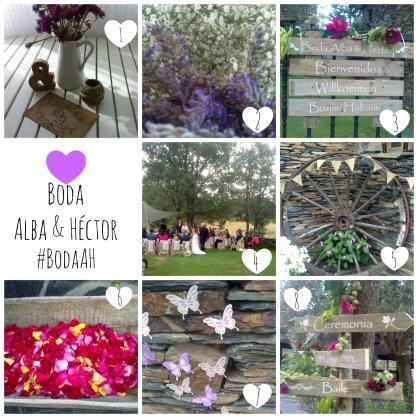 Boda Alba & Héctor Collage resumen