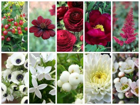 flores_para_bodas_en_oto_o_collage