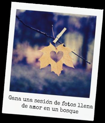 sorteo sesión de foto en pareja en otoño