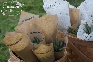 La boda vegetariana y rústica en toledo de rebeca y alberto