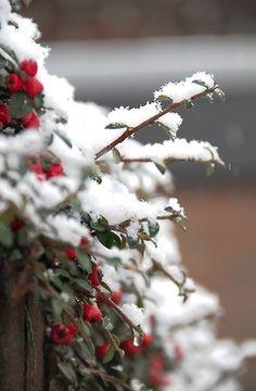 cómo hacer nieve artificial