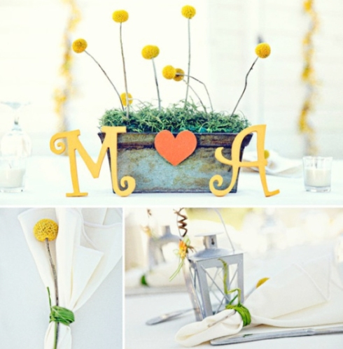billy-ball-wedding-flower-ideas-001