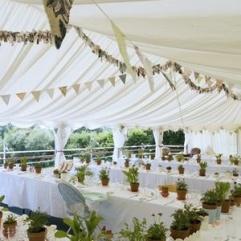 decoración de boda con macetas