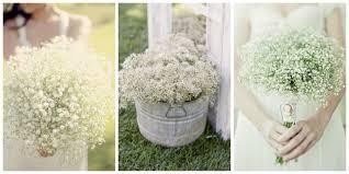 paniculata-rincones-decoración boda 7