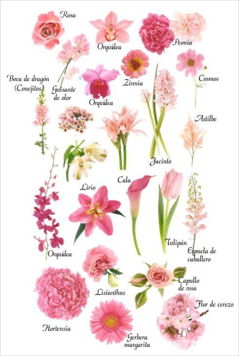 flores-en-tonos-rosas